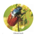 PRO-ECO katalog 2012 s koricama.cdr