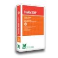 haifa_sop