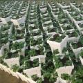 navodnjavanje jagoda voca galerija slika pseno