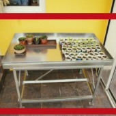 Radni stol za staklenik plastenik PSW-1A-142x78x80cm Zn
