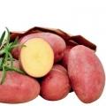 sjemenski krumpir VALERY