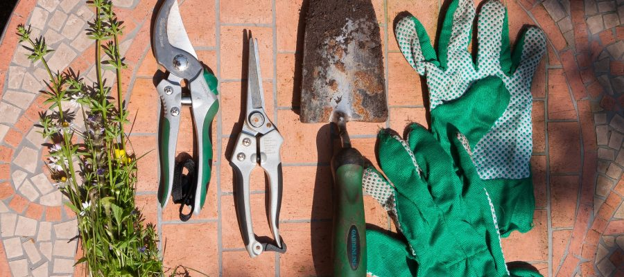 Novo u našoj internet trgovini – vrtni alati!